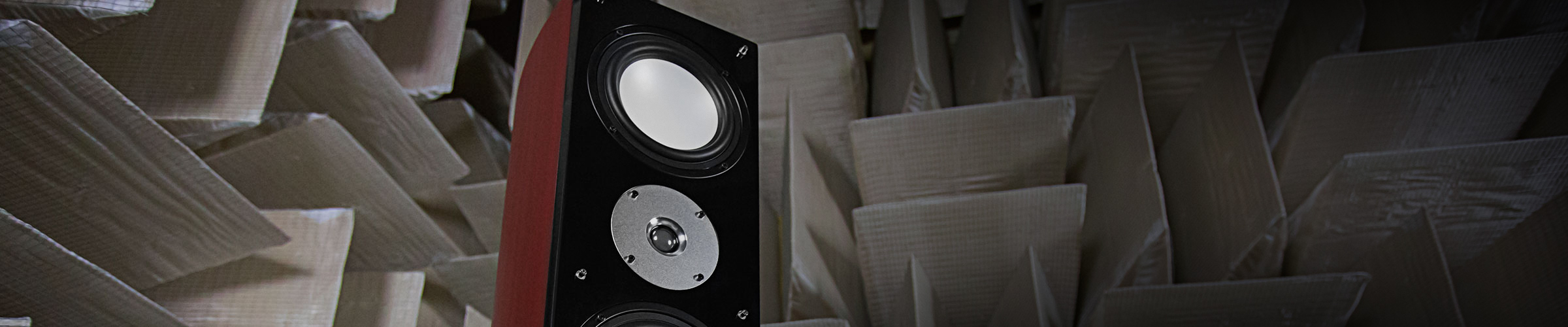 XLBPHTB-DW-KIT speakers lifestyle